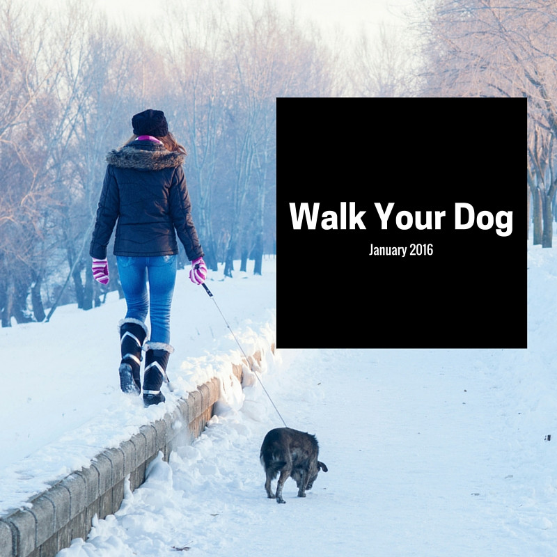 It's Walk Your Dog Month, So Grab the Leash and Get Outside